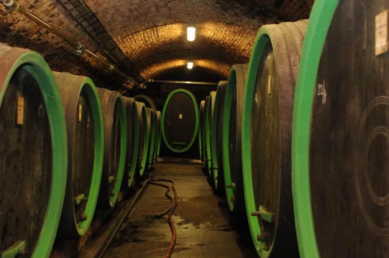 Výsledek obrázku pro baloun vinařství